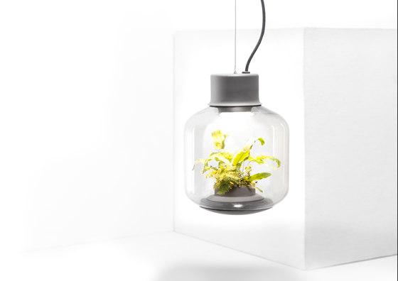 Mygdal Plantlight Large Zen by Nui Studio