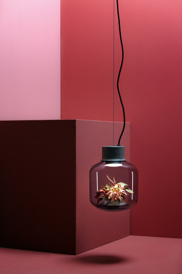 Mygdal Plantlight Large Jungle by Nui Studio