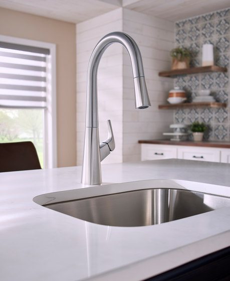 Vaughn™   Pull-Down Kitchen Faucet by Danze