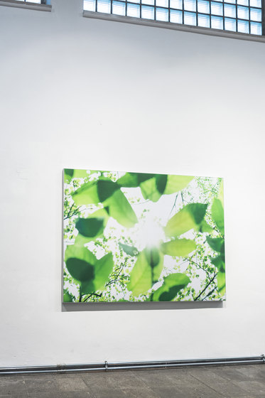 Wall Absorber 55/40 digitally printed  with circumferential cover  or fabric-covered inner edge de AOS