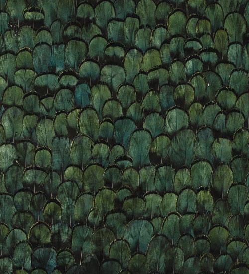 Cascadia Pea Wallcovering Architonic