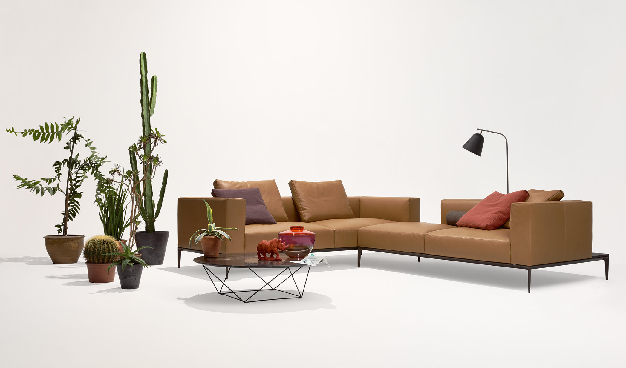 jaan living sofa modulare sitzgruppen von walter knoll architonic. Black Bedroom Furniture Sets. Home Design Ideas