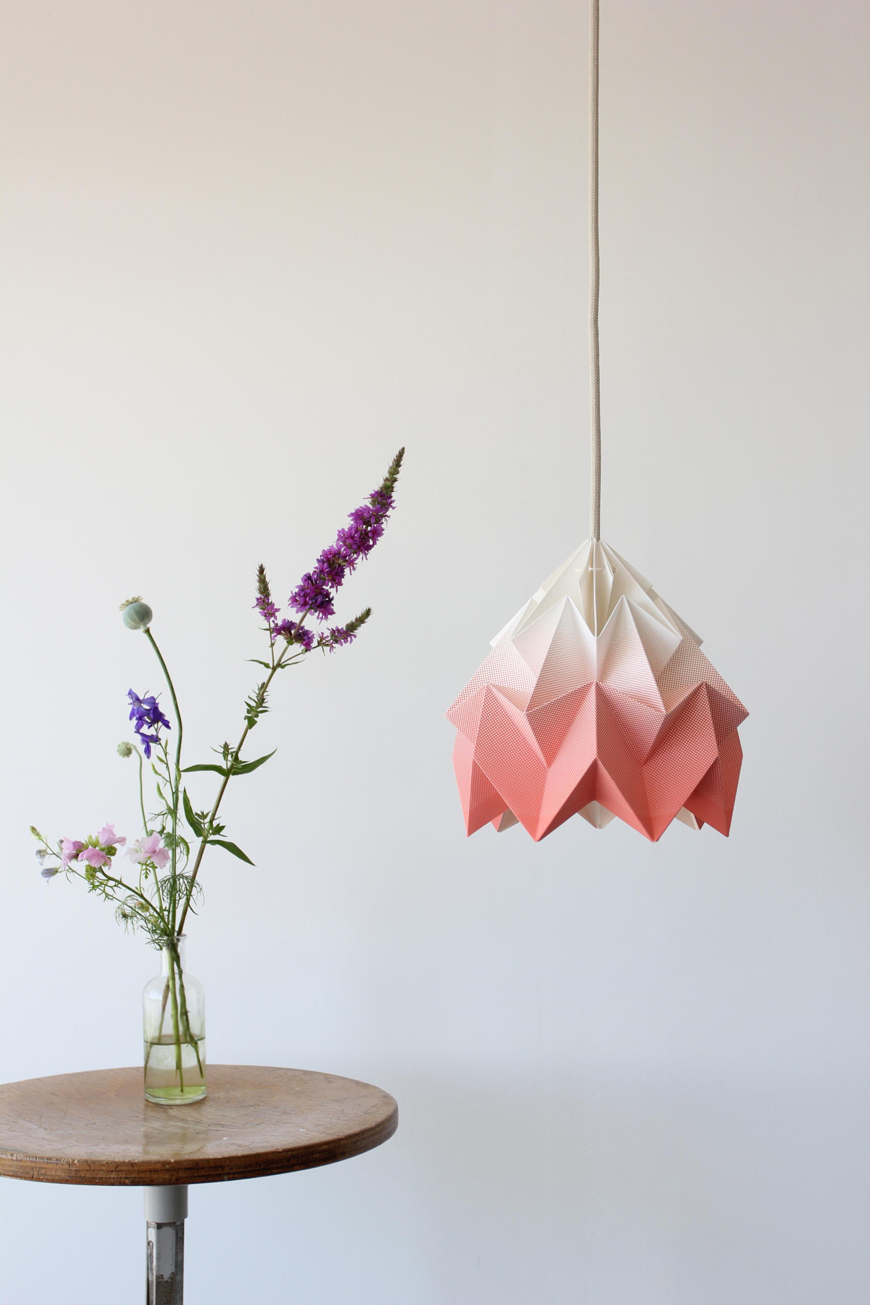 Moth Lamp Gradient Coral General Lighting From Studio