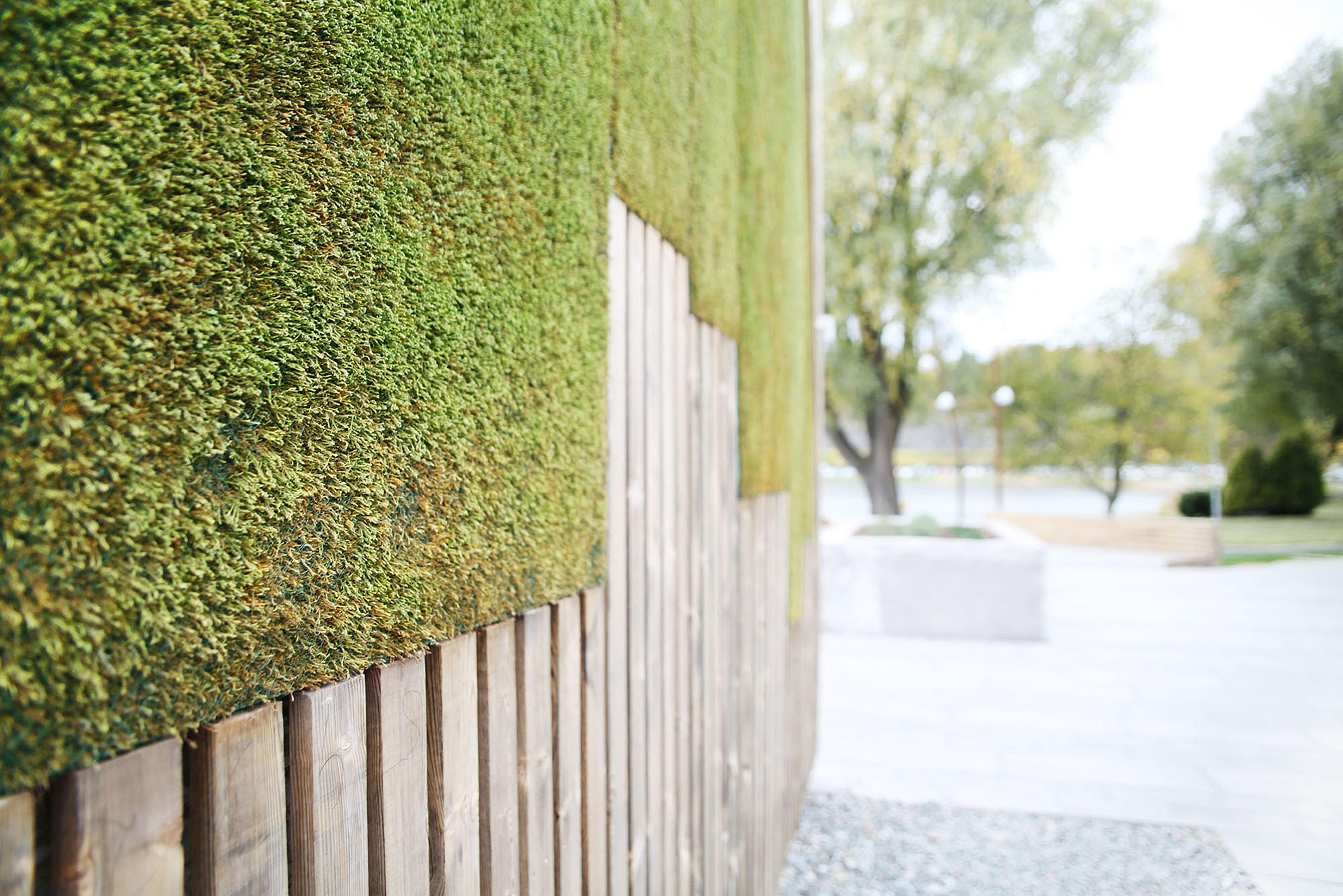 Outdoor Moss Wall Designer Furniture Architonic