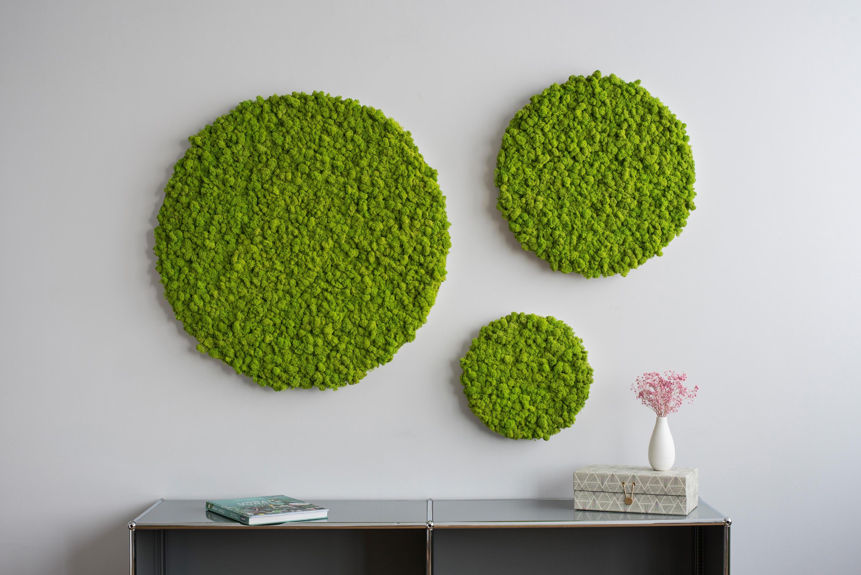 kreis islandmoos 34cm wanddekoration von stylegreen architonic. Black Bedroom Furniture Sets. Home Design Ideas