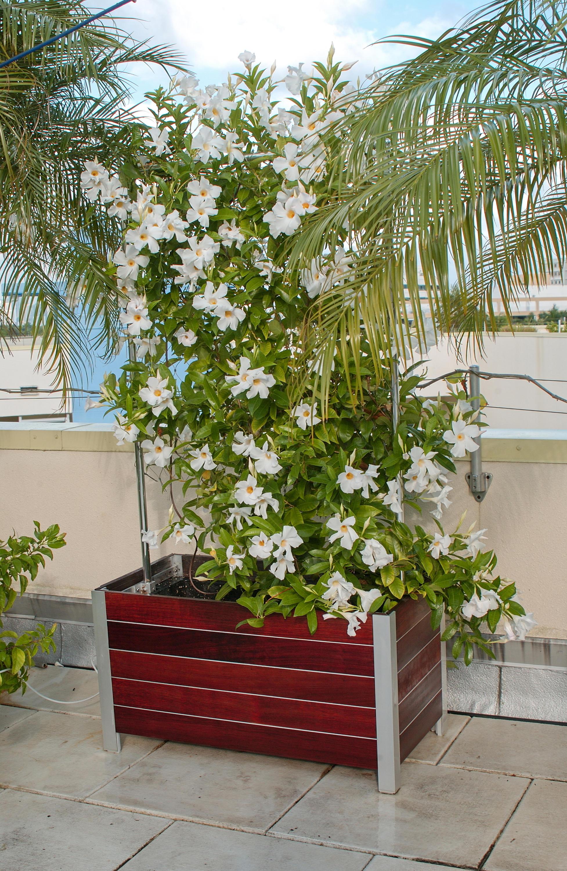 Mariner Planters Plant Pots From Deepstream Designs