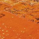 Rugs-Designer rugs-Carpets-Industrial blazing orange-Miinu
