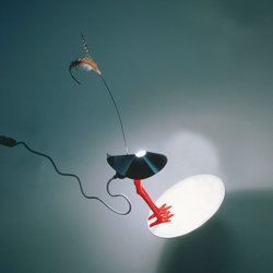 Bibibibi | Table lights | Ingo Maurer