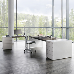 Size table with container | Executive desks | RENZ
