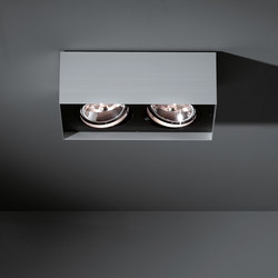 Multiple surface 2x AR111 GI | Ceiling-mounted spotlights | Modular Lighting Instruments