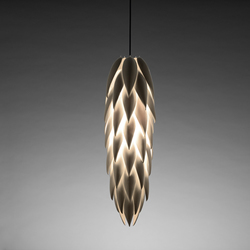 Aloe Shoot | General lighting | Jeremy Cole