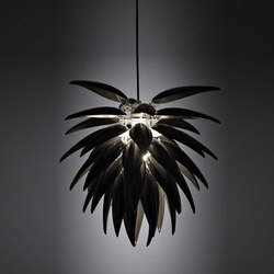 Aloe Noir Blossom | General lighting | Jeremy Cole