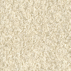 Poodle 1467 | Tapis / Tapis design | OBJECT CARPET