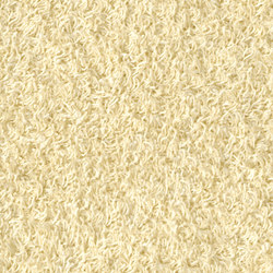 Poodle 1485 | Tapis / Tapis design | OBJECT CARPET