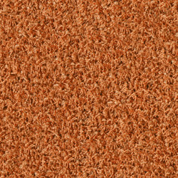 Poodle 1471 | Tapis / Tapis design | OBJECT CARPET