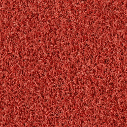 Poodle 1476 | Tapis / Tapis design | OBJECT CARPET