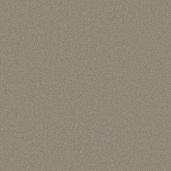 Silky Velvet 0609 Asche | Wall-to-wall carpets | OBJECT CARPET