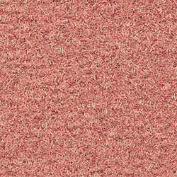 Silky Velvet 636 | Wall-to-wall carpets | OBJECT CARPET