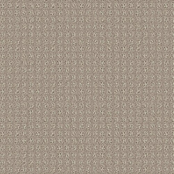 Squadra 1021 Champagner | Wall-to-wall carpets | OBJECT CARPET