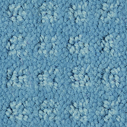 Squadra 1038 | Carpet rolls / Wall-to-wall carpets | OBJECT CARPET