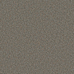 Scor 0557 Ashes | Wall-to-wall carpets | OBJECT CARPET