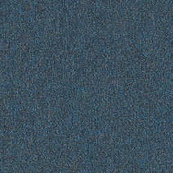 Scor 0562 Marine | Wall-to-wall carpets | OBJECT CARPET