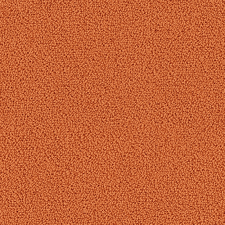 Accor 1023 Orange | Rugs | OBJECT CARPET