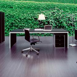 Corium | Individual desks | Fantoni