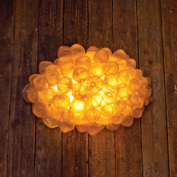 Blondie Wee | Wall lights | Aqua Creations
