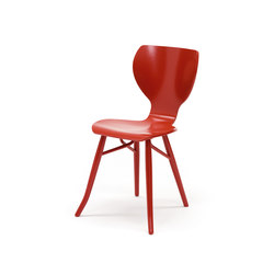 Tulipani chair | Sillas para restaurantes | Linteloo