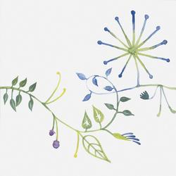 Primavera Colore 1 | Baldosas | Ceramica Bardelli
