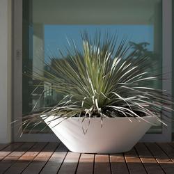 Fang Centro | Macetas plantas / Jardineras | Vondom
