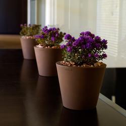 Fang Cono | Flowerpots / Planters | Vondom