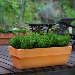 Fang Jardinera conica | Flowerpots / Planters | Vondom