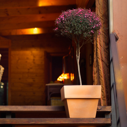 Fang vaso cuadrado | Bacs à fleurs / Jardinières | Vondom