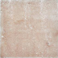 Bianco Orione |  | Giovanni De Maio