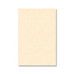 Vinde Champagne 30x45 | Wall tiles | Ceracasa