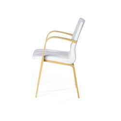 "Armchair 640 ""Cinus"" | Visitors chairs / Side chairs | Edsbyverken"