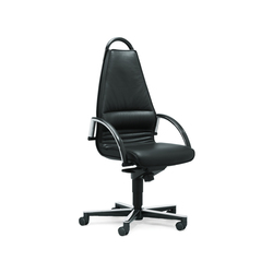 giroflex 44-8285 | Sedie girevoli dirigenziali | giroflex
