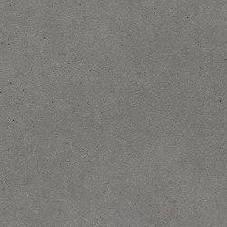 fibreC Ferro Light FL silvergrey | Concrete panels | Rieder