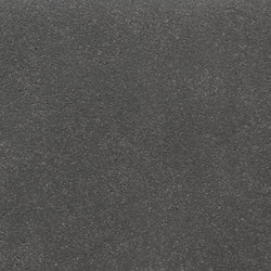 fibreC Ferro Light FL anthracite | Concrete panels | Rieder