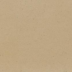 fibreC Ferro Light FL sandstone | Rivestimento di facciata | Rieder