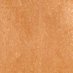 H25/180 Wood matt Bird's Eye Maple | Paneles | Homapal