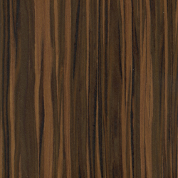 64204 Ebony Safari | Wood veneers | Treefrog Veneer