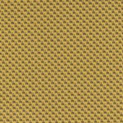 3164 Fibra Carbonio Dorata | Panneaux composites | Arpa