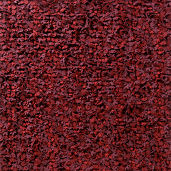Little field of flowers Reds | Tapis / Tapis design | Nanimarquina