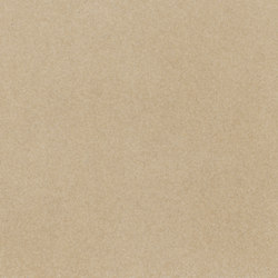 fibreC Matt MA sandstone | Revêtements de façade | Rieder