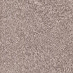 skai Sotega Stars platino | Faux leather | Hornschuch