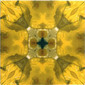 Yellow Glitz 7 | Ceramic tiles | Dominic Crinson