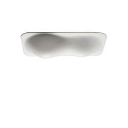 Bubble 500/250 | Wall / Ceiling lamp | General lighting | Vertigo Bird